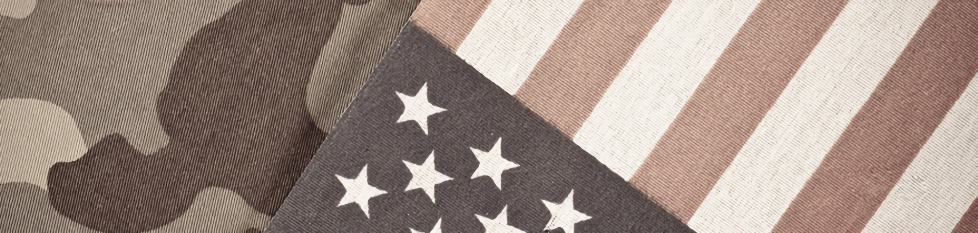 Government Jobs US flag and camo